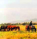 Земля Жктысу. Фотографии Казахстана
