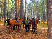 National Nature Park Burabay. Pictures of Kazakhstan nature