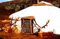 Maral Farm. Yurts