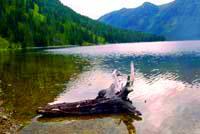 Катон-Карагайский Национальный Парк. Природа Казахстана