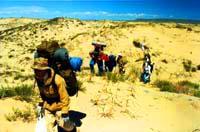 Кулуджунский природный заповедник. Природа Казахстана