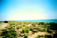 Caspian Sea. Kazakhstan ecology