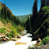 Река Тургень. Реки и озера Казахстана